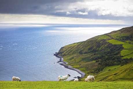 <p>Irlanda</p>