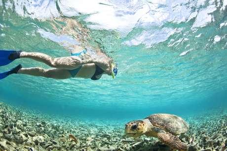 <p>Belize</p>