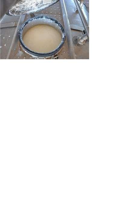 Análises de duas amostras de leite apreendido apontaram presença de formol