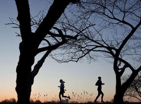 <p>El movimiento físico de todo tipo y el ejercicio regular ayudan a mantener la mente aguda, a dormir mejor y a que el cerebro segregue endorfinas.</p>