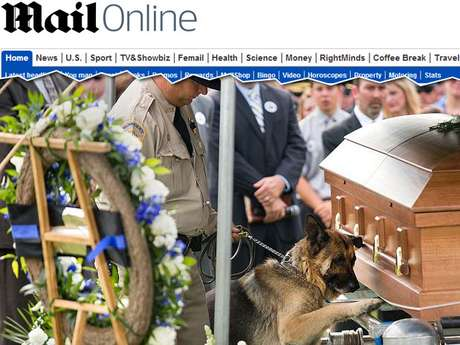 Figo coloca sua pata sobre caixão do companheiro morto durante o funeral