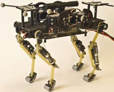 Protótipo do robô 'felino'