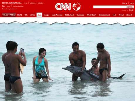 Turistas preferiram tirar fotos ao lado do animal em vez de procurar ajuda
