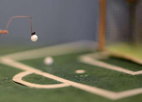 """<p>Pulgas """"amestradas"""" são um espetáculo comum em circos; esta joga futebol</p>"""