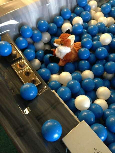 Depois que uma família de raposas adotou a sede do Facebook em Menlo Park, na Califórnia, como lar e virou um sucesso na internet, funcionários da rede social em Seattle resolveram parodiar a iniciativa, adotando uma raposa de pelúcia