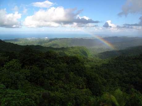 Localizada 56 quilômetros a leste de San Juan, a Floresta Nacional de El Yunque é uma reserva natural de 113 km2 localizada nas encostas da Serra de Luquillo, no nordeste de Porto Rico. O lugar atrai tanto portorriquenhos com sua natureza exuberante e paisagens de tirar o fôlego