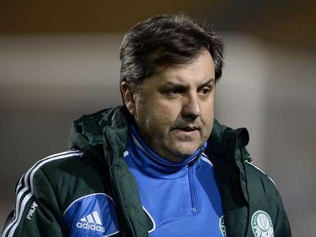 <p>Gilson Kleina preteriu André Luiz no Palmeiras</p>