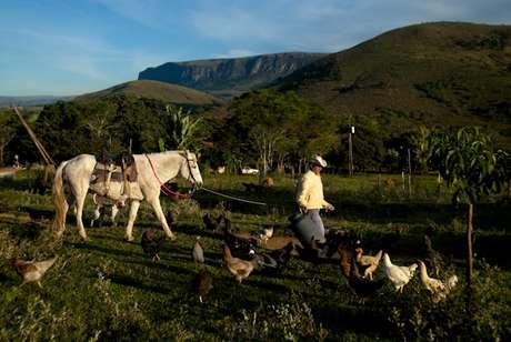 """<p>Fotos retratam todo o """"caminho"""" do queijo, desde a criação da vaca até a comercialização</p>"""