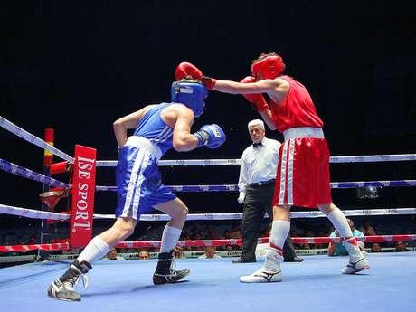 Sigue el Torneo de Boxeo 'Guantes de Oro' por Terra