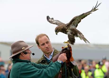William recebe um falcão das mãos de treinador durante feira em Anglesey, no País de Gales