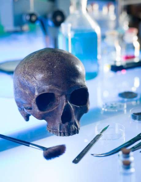 Uma pesquisa da Faculdade de Odontologia da USP chegou à conclusão que identificar um cadáver pelos seus dentes é tão eficiente quanto realizar um exame de DNA