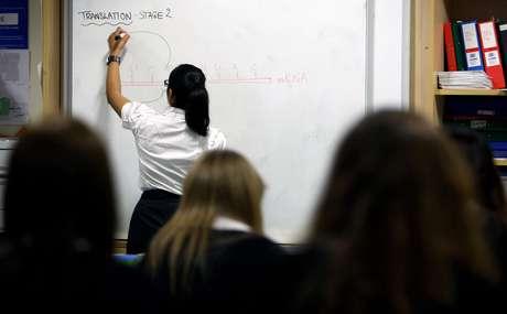 <p>Dez países respondem por 72% da população mundial de analfabetos, entre eles o Brasil, a Índia, China e Etiópia</p>