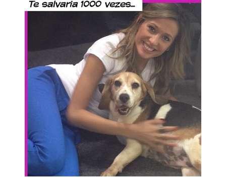 <p>Apresentadora e ativista Luisa Mell posa com um dos cães resgatados e diz não estar arrependida de ação no Instituto Royal</p>