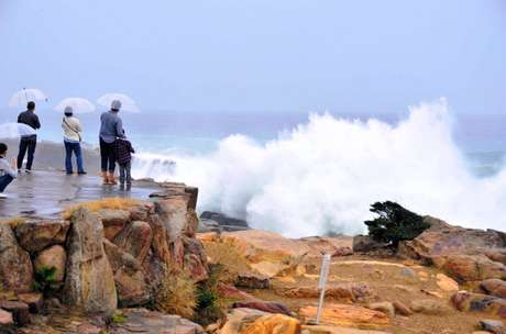 <p>El término tifón se utiliza para nombrar un tipo de ciclón tropical, que comúnmente ocurre dentro de la región noroeste del océano Pacífico, al oeste de la Línea internacional de cambio de fecha. Estos mismos sistemas en otras regiones son referidos como huracanes archiconocidos en EE.UU., o más generalmente, ciclones tropicales.</p>