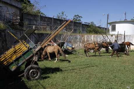 Carroças serão encaminhadas à reciclagem e animais irão para abrigo