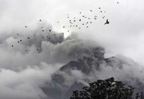 Pássaros sobrevoam nas proximidades do Monte Sinabung