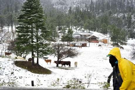 <p>Podría nevar en algunas zonas del país</p>