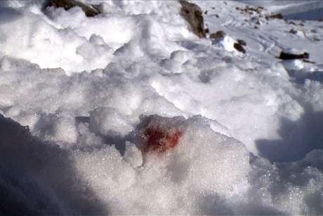 <p>Mancha de sangue de acidente de Schumacher</p>