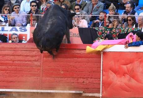 Touro tenta pular a cerca da famosa arena da Cidade do México, que tem mais de 60 anos. Plateia se assusta