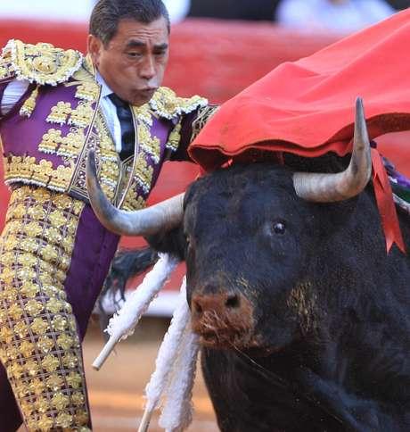 <p>Toureiro Eulalio Lopez perdeu o controle do animal durante evento. Defensores de animais tentam acabar com a tourada no país</p>