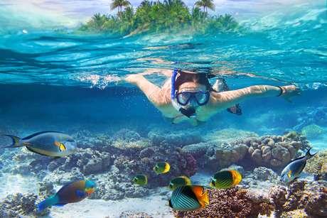O mergulho e o snorkeling cativam os visitantes pela grande visibilidade