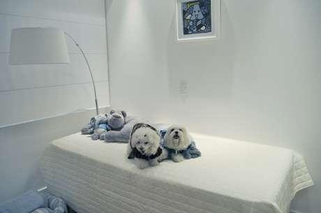 Ao ser contratada para fazer a decoração de um apartamento de 140 m2 no bairro da Mooca, em São Paulo, a arquiteta Érica Salguero recebeu uma incumbência inusitada: criar um quarto para as cachorras do casal de proprietários. Informações: (11) 2093-8658