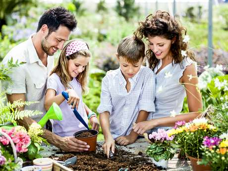 Cultivar uma hortinha, ver de perto a colheita e manusear os alimentos estimula a criança a comer mais frutas, verduras e legumes