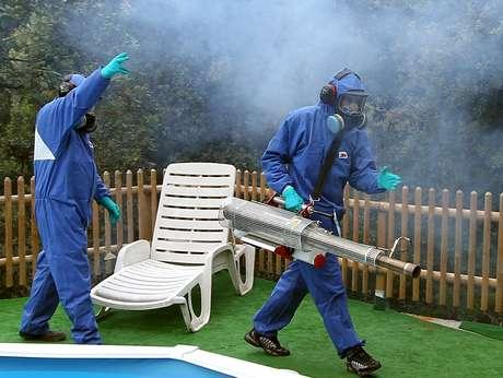 França chegou a sofrer com o vírus chikungunya e teve que exterminar mosquitos
