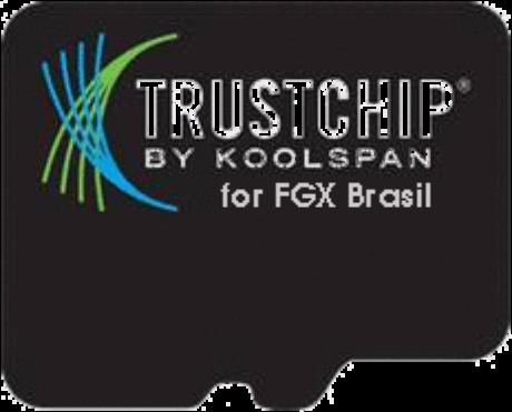 TrustChip, da KoolSpan; chip deve proteger a comunicação entre aparelhos eletrônicos
