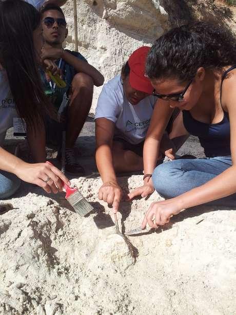 """Em """"ensaio"""", paleontólogos acharam quatro fósseis"""