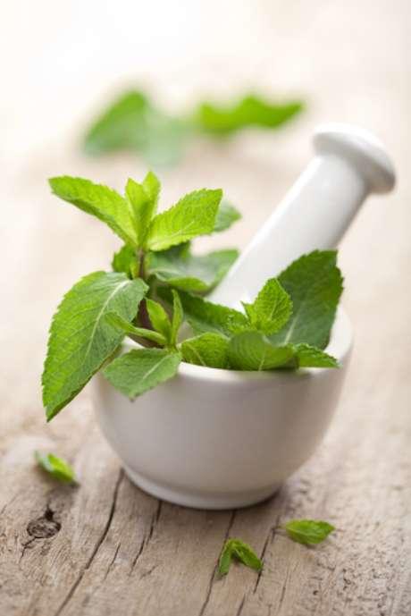 Efeitos benéficos dos remédios naturais existem; porém ainda há muito que se pesquisar