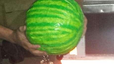 <p>Pacotes de maconha simulavam melancias</p>