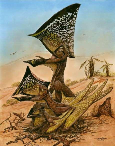 <p>Ilustração do pterossauro feita a partir de estudo dos novos fósseis encontrados</p>