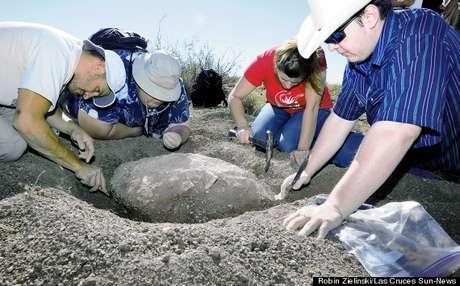 Fóssil de 90 milhões de anos será colocado em exposição em museu do Novo México