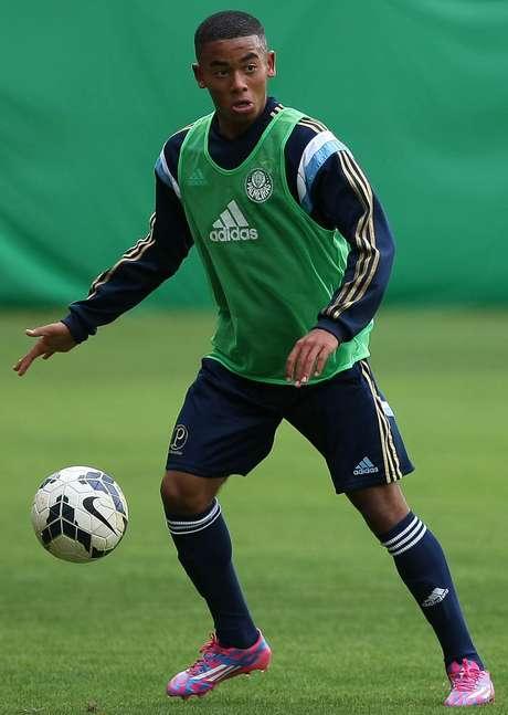 <p>Palmeiras tenta renovar com Gabriel Fernando</p>