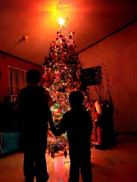 Las 3 opciones para poner el arbolito de navidad en m xico for Cuando se pone el arbol de navidad