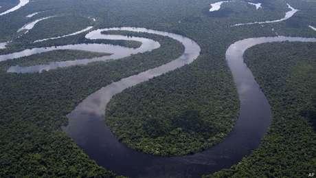 América do Sul é uma das regiões onde risco de extinção devido a alterações climáticas é maior