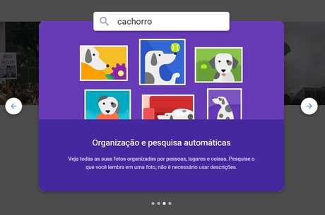 Usuário pode organizar as imagens para fazer uma pesquisa automática