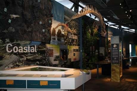 Centro de estudo das espécies de animais da região atrai cientistas do mundo inteiro