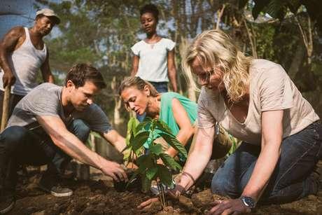 Entre atividades, passageiros ajudarão em plantações de cacau