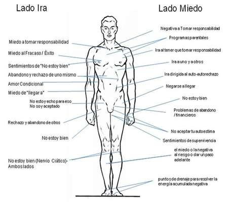 Lado derecho del cuerpo