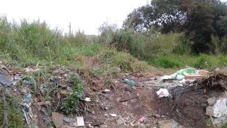 Mato e lixo acumulados no terreno podem gerar multa para o proprietário