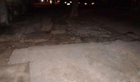 Calçada também foi danificada pelas raízes da árvore