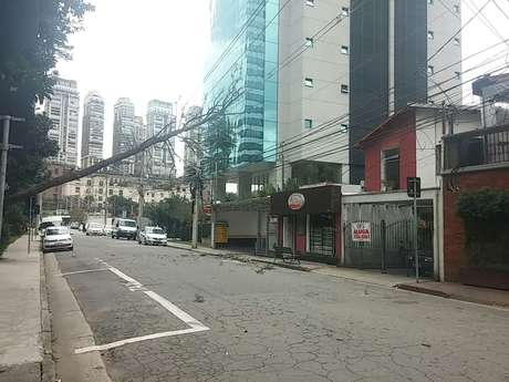 Árvore de grande porte caiu na rua Surubim