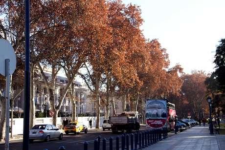 Canaletas irrigam as árvores do centro da cidade