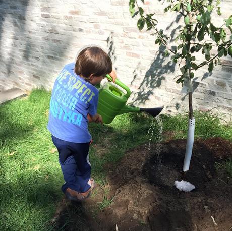 Benjamin planta sua primeira árvore em foto postada pela mãe, Gisele Bündchen, neste domingo (16)