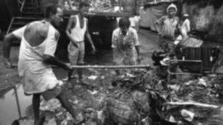 O material que esses trabalhadores removem inclui carcaças de animais, restos de comida, fios de aço, lixo hospitalar, pedaços pontiagudos de vigas de madeira, pedras, vidro quebrado e até lâminas