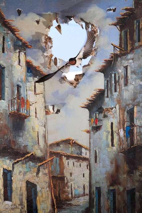 Todo ano, um casal de andorinhas-de-bando faz ninho em um velho depósito na fazenda de Juan Tapia no sul da Espanha. Ele criou esta foto após posicionar uma antiga pintura já danificada em uma das janelas e esperar até que um dos pássaros alçassem voo.