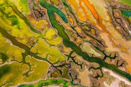 """O Parque Natural de Baía de Cádiz, na costa da Espanha, foi retratado nesta imagem aérea chamada """"A Arte das Algas""""."""