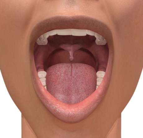 Globalmente, o câncer de boca está entre os 10 tipos de câncer mais incidentes em populações de países em desenvolvimento e em minorias de países desenvolvidos